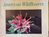 American Wildflowers: Beauty in the Fields