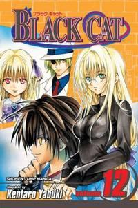 Black Cat Vol. 12