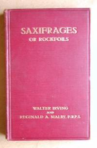 The Rock Gardener's Library: Saxifrages or Rockfoils