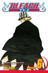 image of Bleach, Vol. 6