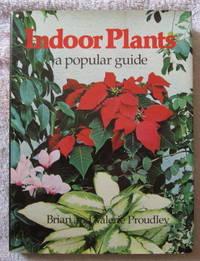 Indoor Plants - A Popular Guide