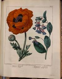 The New Botanic Garden, Illustrated with One Hundred and Thirty-three Plants, Engraved by SANSOM, from the Original Pictures, and Coloured with the Greatest Exactness from Drawings by SYDENHAM EDWARDS