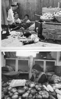 Two undated, unspecified original photographs, assumed S. or C. America ca. 1970. Woman with produce, childre with turkeys