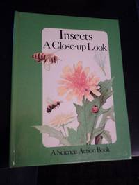 Insects, A Close-up Look
