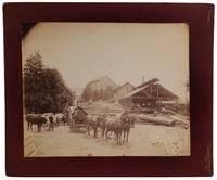 Oregon Logging Photo