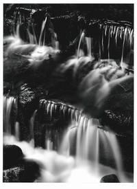 [Original Silver Gelatin Print, Signed]: FERN SPRING, DUSK ... [with:] IMAGES 1923 - 1974