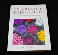 Primroses & Polyanthus : A Guide to the Species and Hybrids
