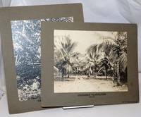 image of [Two photographs mounted on boards, prepared for the Philadelphia Museums]