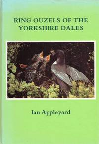 Ring Ouzels of the Yorkshire Dales