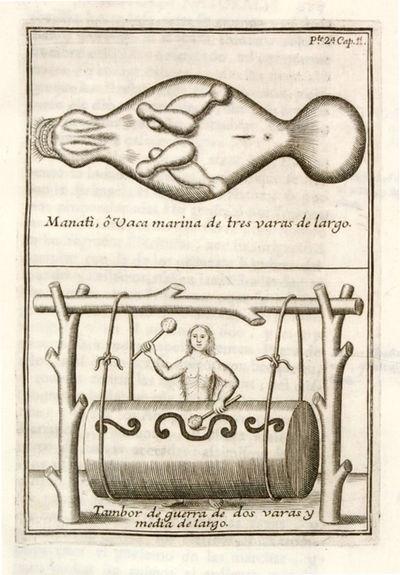El Orinoco ilustrado, y defendido,...