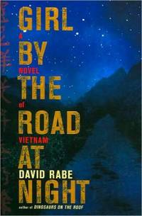 Girl by the Road at Night : A Novel of Vietnam