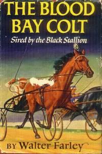 image of The Blood Bay Colt