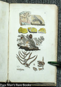 A GRAMMAR OF BOTANY, ILLUSTRATIVE OF ARTIFICIAL AS WELL AS NATURAL  CLASSIFICATIONS, WITHAN EXPLANATION OF JUSSIEU'S SYSTEM