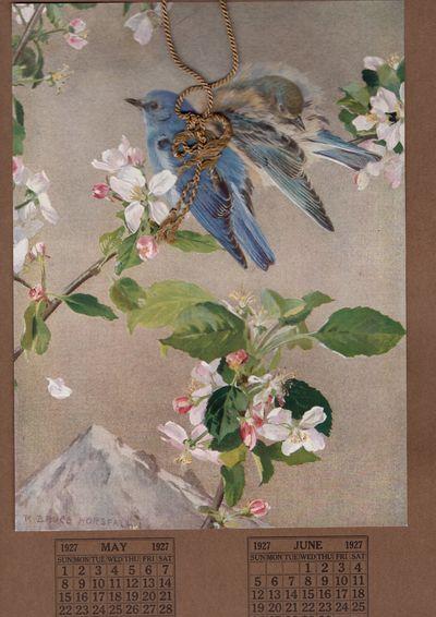 Boston: The Massachusetts Audubon Society, 1927. First Edition. Card. Very good. SIx panel calender ...