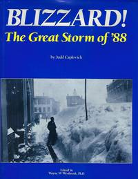 BLIZZARD: THE GREAT STORM OF '88