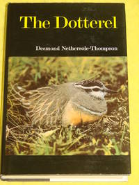 The Dotterel
