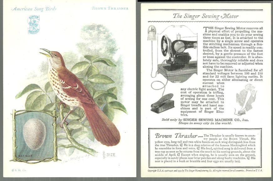 VICTORIAN TRADE CARD FOR SINGER SEWING MACHINE AMERICAN SONG BIRDS SERIES BROWN THRASHER, Advertisement