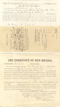 Andrew B. Laird Vs. Board of County Commissioners of Socorro County Court  Documents and Sheriff's Summons