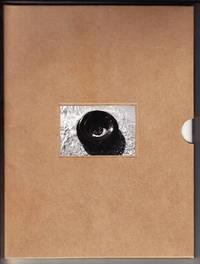 Robert Gober:  The United States Pavilion, 49th Venice Biennale 6/10-11/4/2001