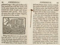 Adventures of the beautiful little maid Cinderilla, or, The history of a glass slipper.