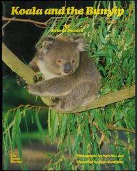 Koala And The Bunyip