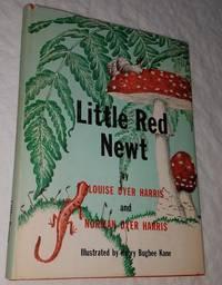 LITTLE RED NEWT