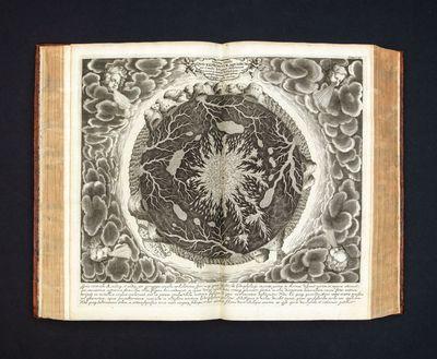 Mundus Subterraneus, in XII Libros...