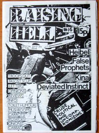 image of Raising Hell No. 16. Punk Music Zine.