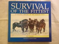 image of Survival of Fittest - Natural History of the Exmoor Pony