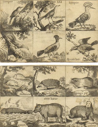 Very Good. Ephemera. A scarce set of 30 stiff cards, each with a mounted sheet of 6 woodcut illustra...