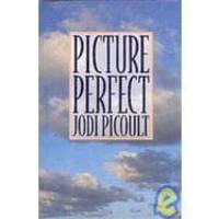 Picture Perfect by Jodi Picoult - Hardcover - 1995-05-04 - from Books Express and Biblio.co.uk