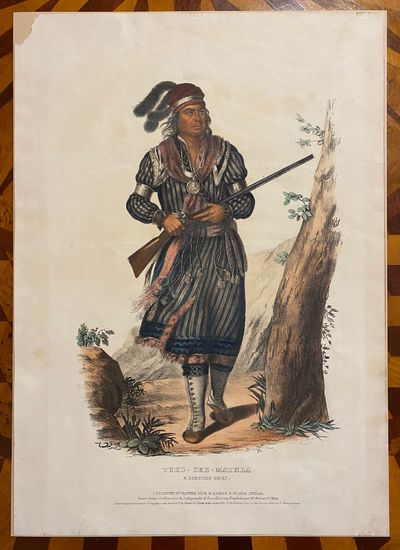 Philadelphia: James G. Clark, 1843. Very good. Hand-colored lithograph after Charles Bird King (496 ...