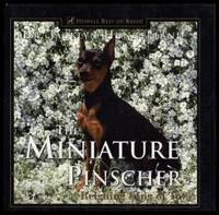 image of THE MINIATURE PINSCHER - Reigning King of Toys