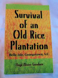Survival of an Old Rice Plantation