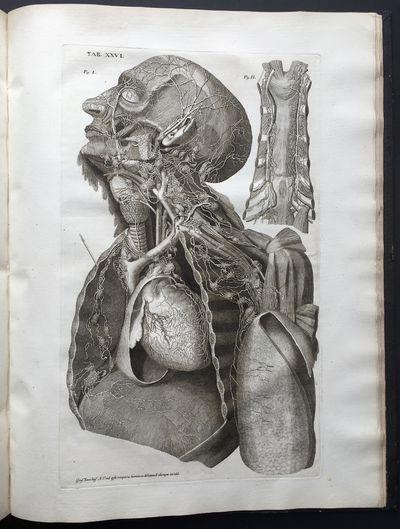 Vasorum lymphaticorum corporis humani...