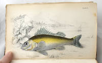 The Natural History of Fishes of the Perch Family. The Naturalist\'s Library. Ichthyology. Vol I