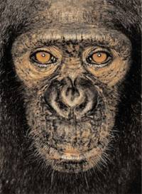 James & Other Apes