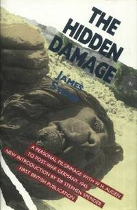 image of The Hidden Damage