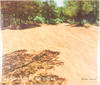 View Image 3 of 4 for Mont Sainte Victoire (Signed Limited Edition with Print) Inventory #25381
