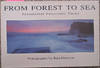 image of From Forest to Sea: Sensational Panoramic Views of the Scenic Central Coast
