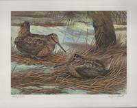 image of 1986 Conservation Stamp Print No. 8: American Woodcock series print No. 2