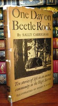 image of ONE DAY ON BEETLE ROCK