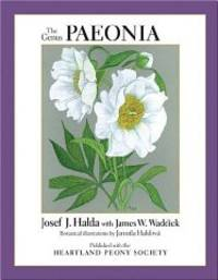 Genus Paeonia, The