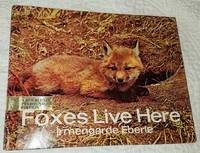 FOXES LIVE HERE by Eberle, Irmengarde, Illustrated by Photos