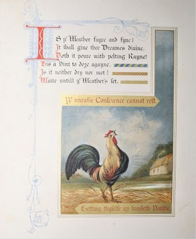 London: Day & Son Limited, 1866. First Edition. Decorated Cloth. Very Good. Seven heavy card leaves,...