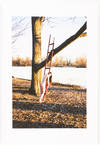 View Image 8 of 10 for New Love (Signed First Edition) Inventory #25414