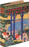 image of Tender Is the Night