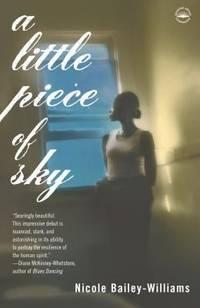 A Little Piece of Sky : A Novel