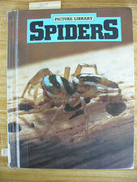 Spiders (Picture Library)