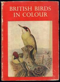 British Birds in Colour